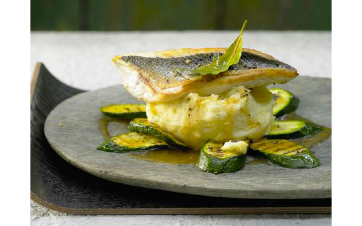Fillet of sea bream with zucchini puree